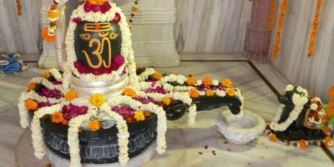 shravan fasting-shivalingam puja